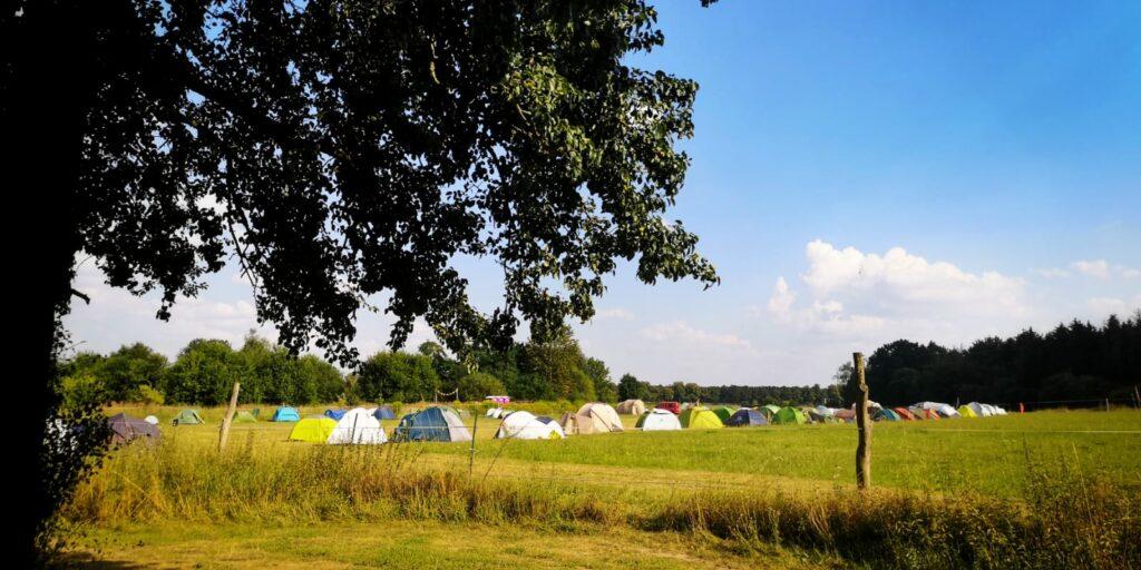 blue-monkey-birthday-fest-2020-camping